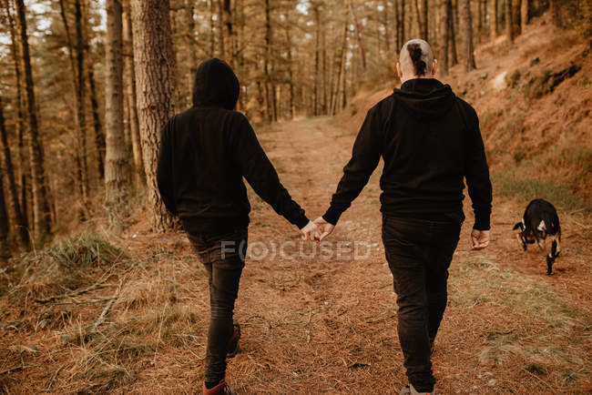 Back view of homosexual couple holding hands and walking with dog on way on hill in sunny day — Stock Photo
