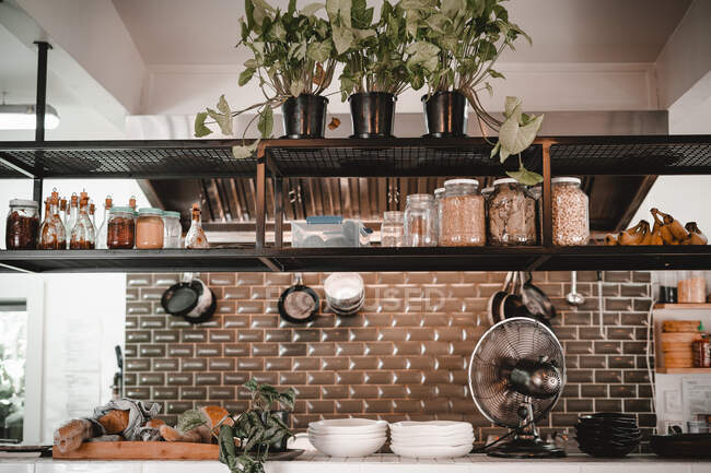 Modern kitchen with glass jars and houseplants on shelves and kitchenware hanging on wall — Stock Photo