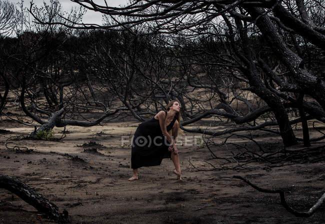 Young ballerina in black wear dancing between dry woods — Stock Photo
