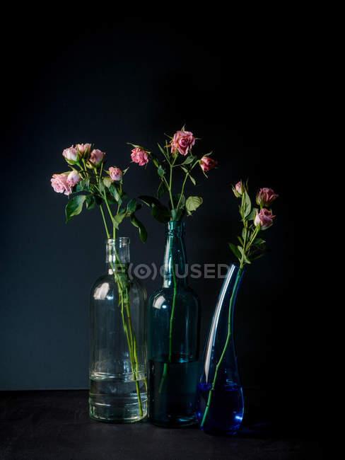 Vasi di vetro con mazzi di fiori incantevoli su sfondo scuro — Foto stock