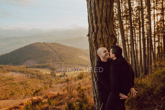 Side view of cheerful homosexual couple embracing and looking at each other near tree in forest and picturesque view of valley — Stock Photo