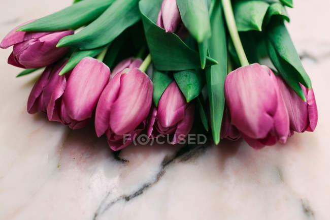 Букет свіжих рожевих тюльпанів на поверхні мармуру — стокове фото