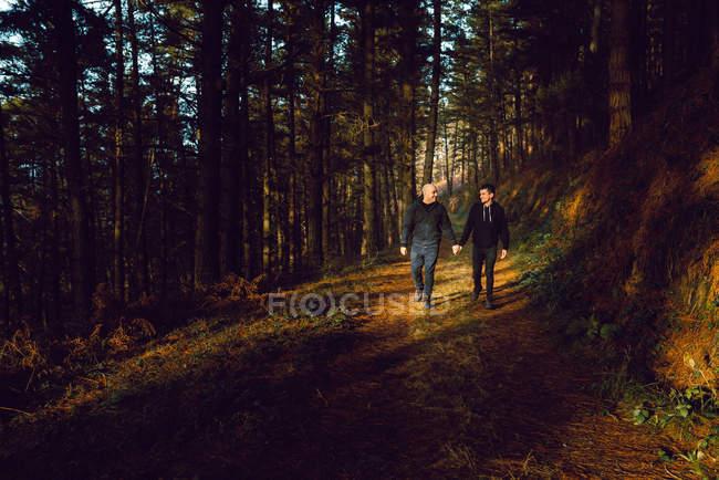 Homosexuelles Paar hält Händchen und geht bei sonnigem Wetter im dunklen Wald spazieren — Stockfoto