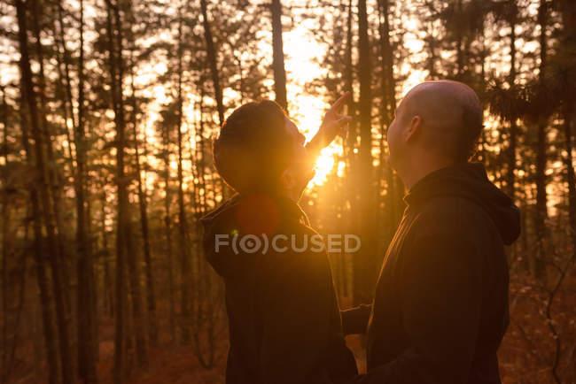 Гомосексуальная пара, стоящая в лесу под ярким солнечным светом — стоковое фото