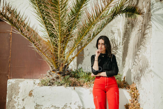 Thoughtful young woman in trendy outfit standing near tropical palm leaves on street — Stock Photo