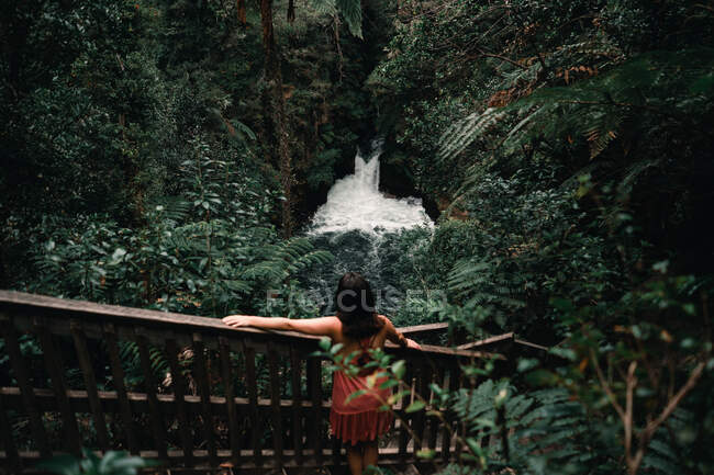 Woman on steps looking at mountain river between tropical forest — Fotografia de Stock