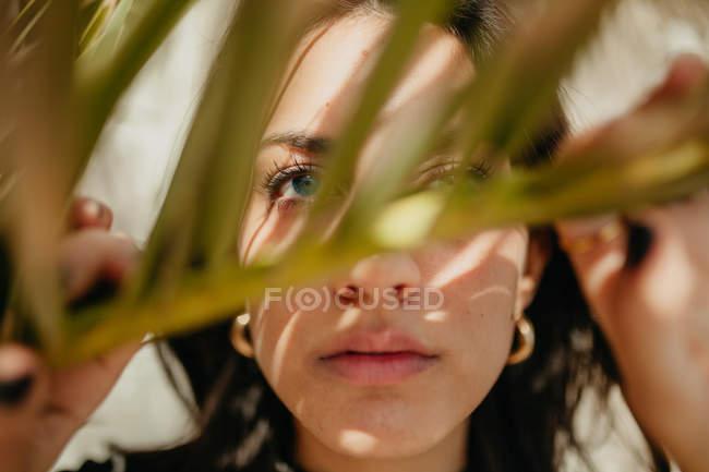 Primer plano de la sensual joven mujer mirando a través de la hoja verde de la palma tropical - foto de stock
