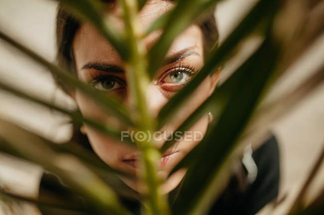 Крупным планом чувственной молодой женщины, смотрящей в камеру сквозь зеленый лист тропической пальмы — стоковое фото