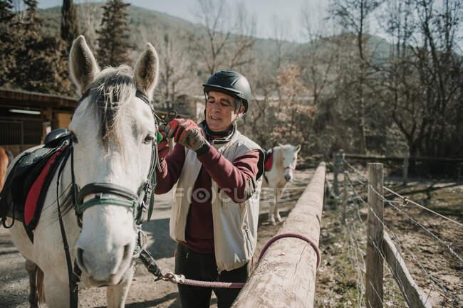 Macho sênior no capacete colocando freio no cavalo branco durante a aula de equitação no dia de outono no rancho — Fotografia de Stock