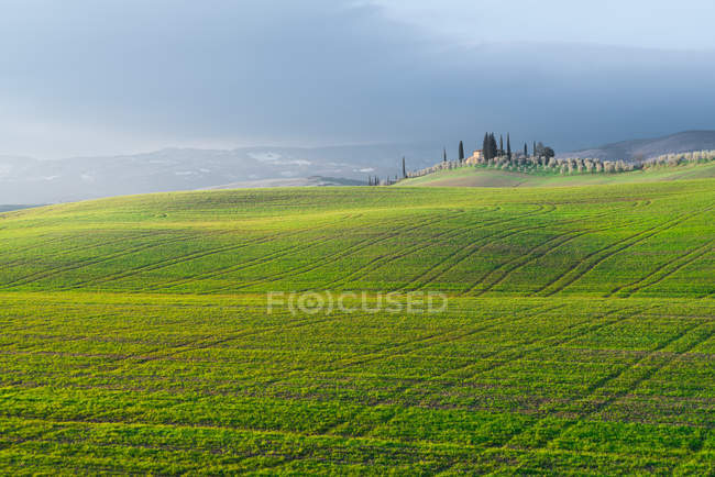 Picturesque landscape of green fields with cottage and trees under cloudy sky, Italy — Stock Photo