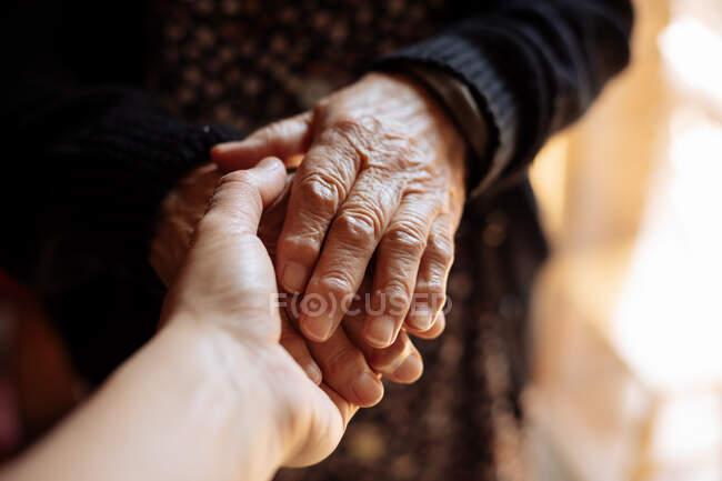 Внук держит бабушку за руку. — стоковое фото
