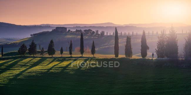 Paysage pittoresque de verdure avec chalet et cyprès dans la lumière du coucher du soleil, Italie — Photo de stock