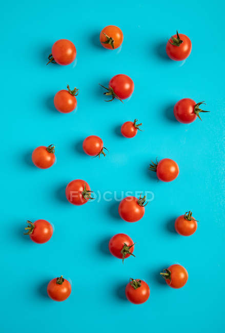 Tomates maduros frescos em dispersado no fundo azul — Fotografia de Stock