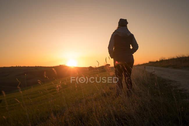 Вид сзади на человека в куртке с руками в карманах, стоящего на зеленых полях Италии на закате — стоковое фото