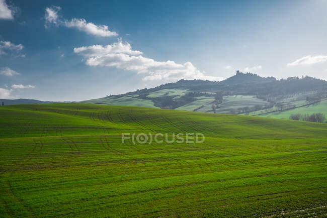 Vista panoramica di infiniti campi verdi alla luce del sole, Italia — Foto stock