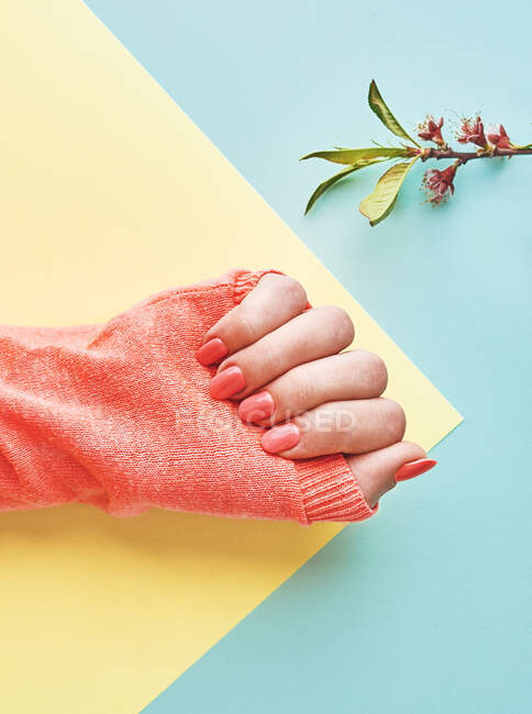 From above of crop female hand in sweater and with manicure of peach color on yellow and blue paper background — Stock Photo