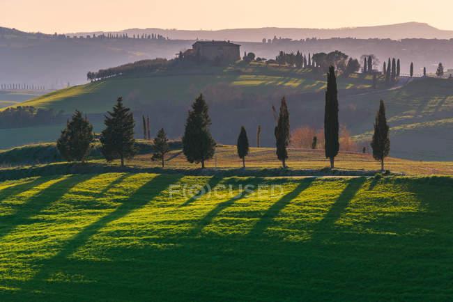 Paesaggio pittoresco di campo verde con cottage e cipressi in piena luce del tramonto, Italia — Foto stock