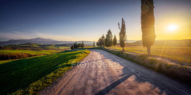 Empty rural road in majestic green fields of Italy at sunset — Stock Photo