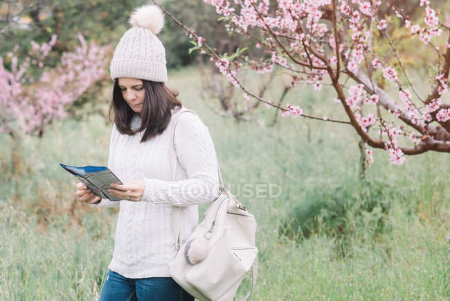 Female traveler with backpack reading guide booklet while walking near blooming tree in spring countryside — стокове фото