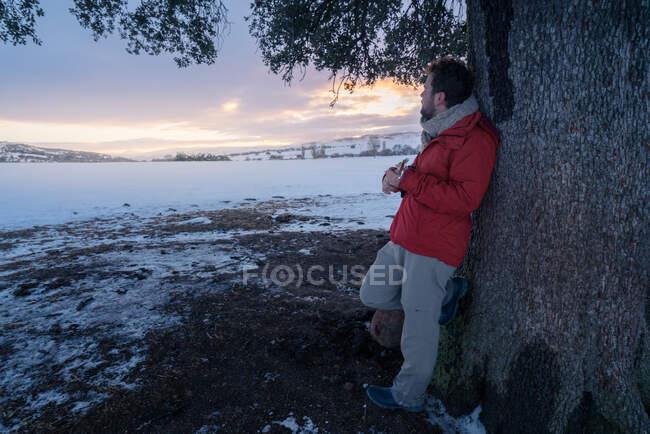 Vue latérale d'un homme d'âge moyen en vêtements chauds jouant de la guitare sous un arbre sur fond de paysage enneigé — Photo de stock