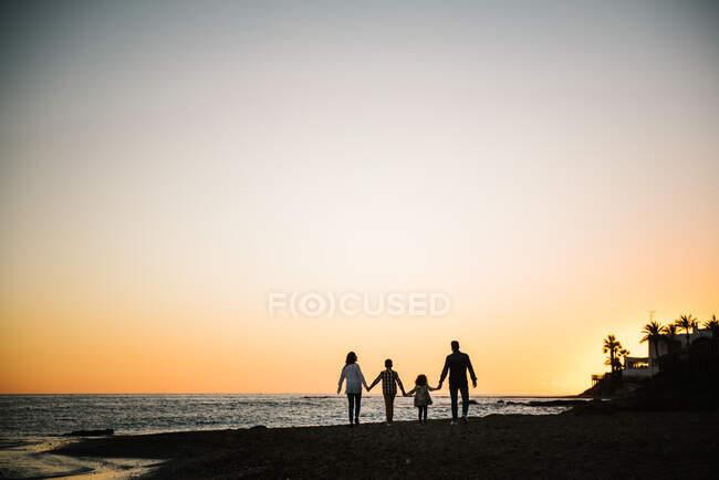 Profilo posteriore di quattro membri della famiglia che camminano tenendosi per mano al tramonto — Foto stock