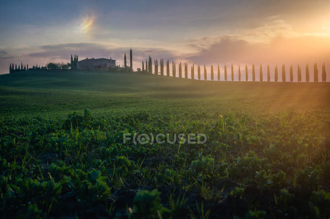 Picturesque landscape of green fields with cottage and trees in bright sunset light, Italy — Stock Photo