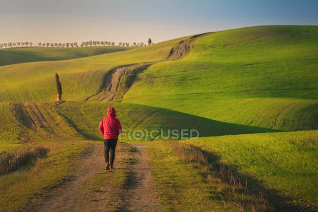 Vista posteriore di persona in giacca che cammina su strada rurale vuota in maestosi campi verdi d'Italia — Foto stock