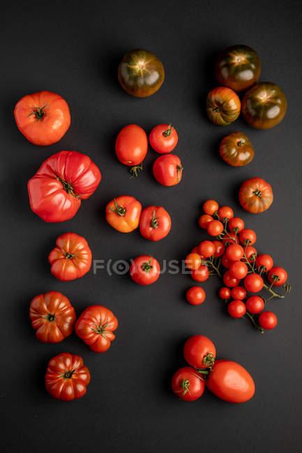 Tomates maduros frescos assorted espalhados na superfície preta — Fotografia de Stock