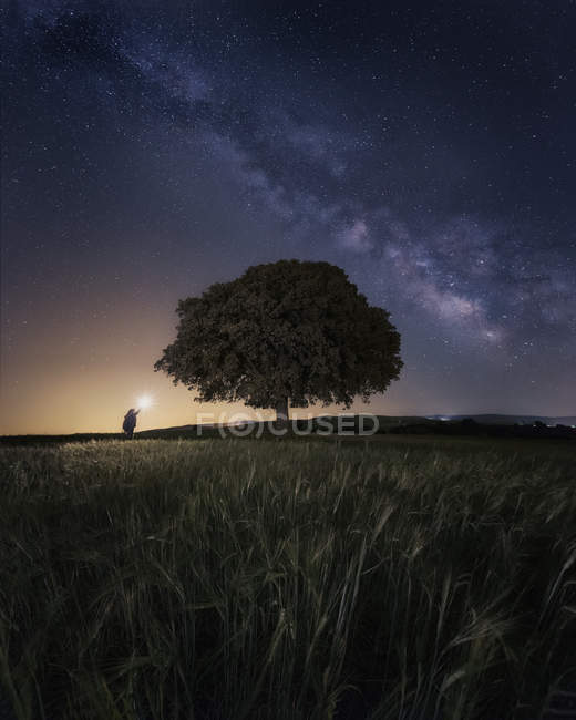 Night sky with majestic Milky way and person with bright upward beam of light next to a tree — стокове фото