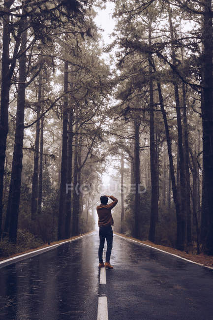 Traveler taking photo while walking on empty road in woods — Stock Photo