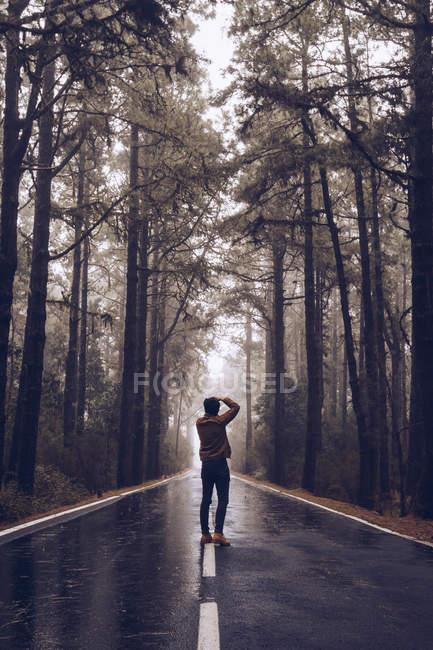 Путешественник фотографирует во время прогулки по пустой дороге в лесу — стоковое фото