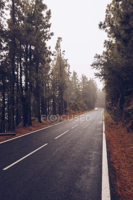 Car driving on countryside road in overcast day — Stock Photo