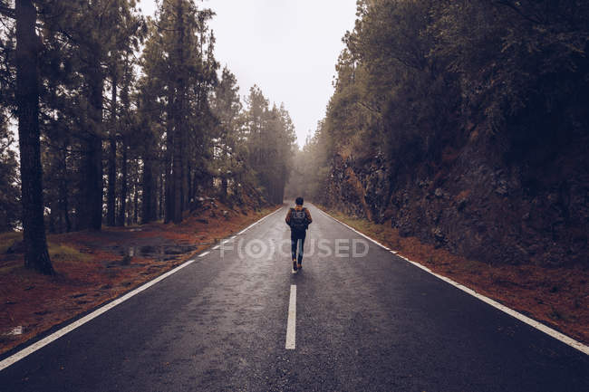 Back view of hiker with backpack walking on roadway along picturesque forest landscape in Spain — Stock Photo