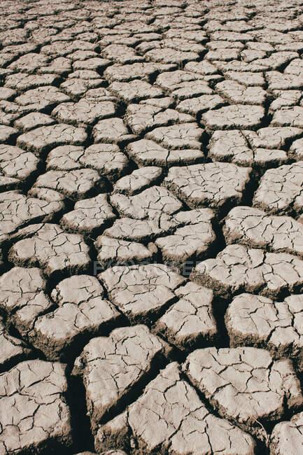 Fissures profondes recouvrant la surface sèche du sol par temps ensoleillé dans la campagne — Photo de stock