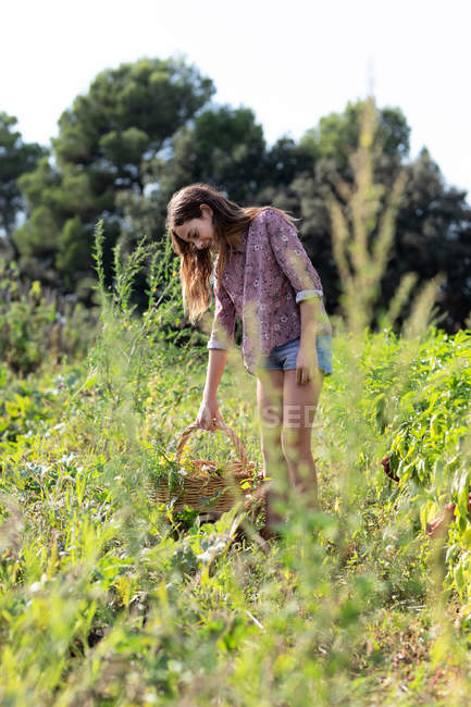 Side view of female teenager in casual outfit smiling and holding basket with green herbs — стокове фото