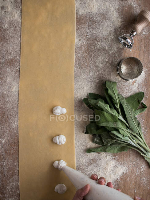 Hands of anonymous cook squeezing creamy filling on thin ravioli dough near bunch of fresh sorrel on table in kitchen — Stock Photo