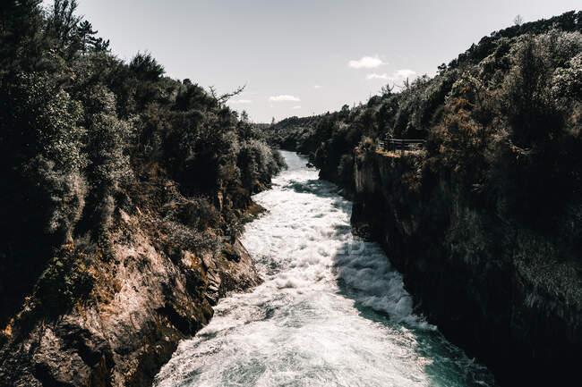Ruscello rapido di acqua dolce che scorre attraverso burrone grezzo nella giornata di sole in Nuova Zelanda — Foto stock