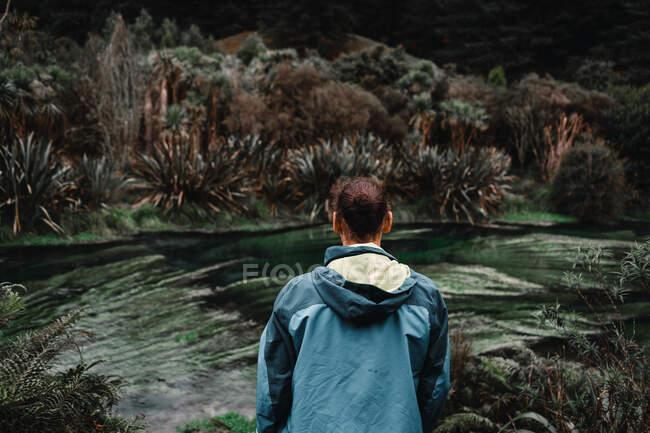 Visão traseira do viajante masculino olhando para o fluxo rápido enquanto está em pé na costa na paisagem tropical — Fotografia de Stock