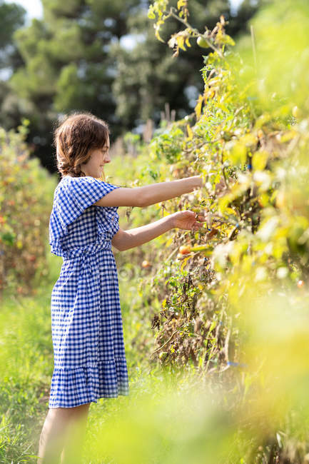 Side view of cheerful teen girl in checkered dress smiling and searching for vegetables — стокове фото