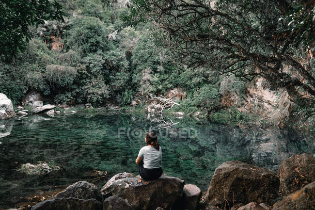 Back view of female traveler sitting on boulders near secret lagoon with calm water in forest in New Zealand — Stock Photo