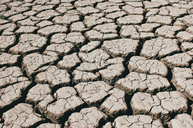 Deep cracks covering dry surface of soil on sunny day in countryside — Stock Photo