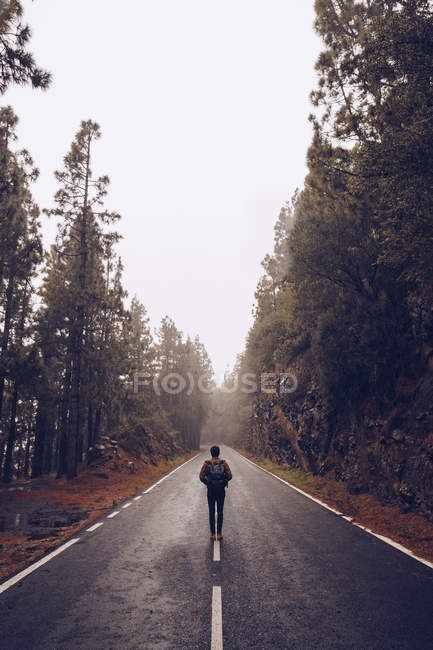 Traveler walking on empty road in woods — Stock Photo