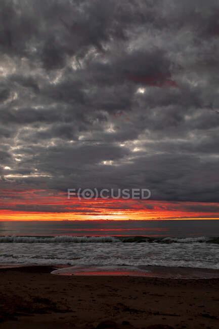 Silhouettes de palmiers contre ciel nuageux — Photo de stock
