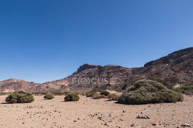 Гірський пік в дикій пустельній ділянці під блакитним небом — стокове фото