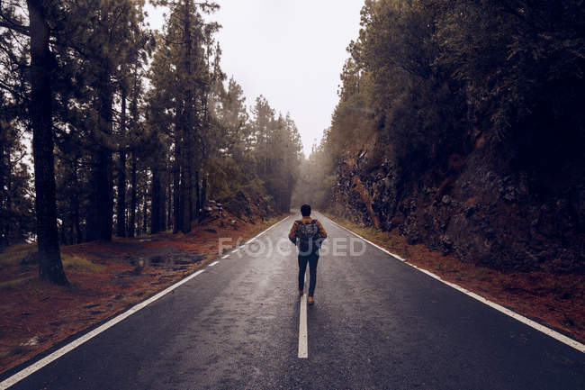 Viaggiatore maschile che cammina su strada vuota nel bosco — Foto stock