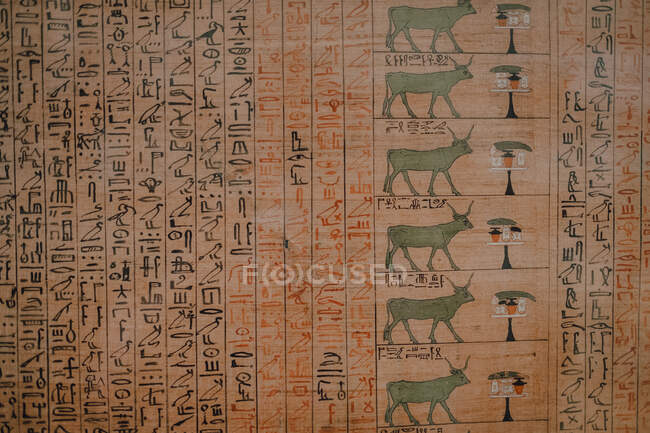 Cairo, Egypt - April, 12 2019: Old wall covered with hieroglyphs in ancient tomb — стоковое фото