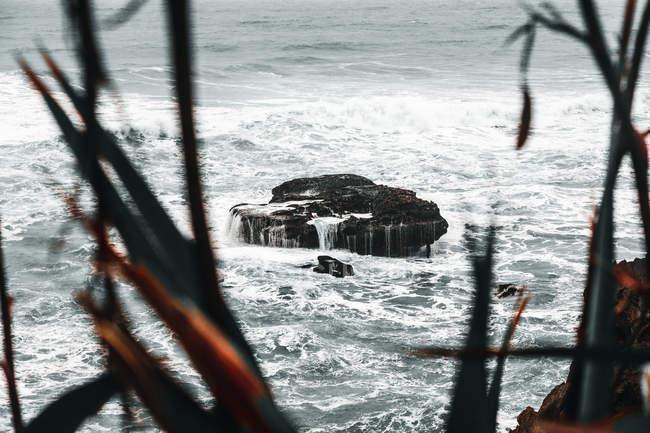 Landschaft einsamer alter Klippen im Meer durch Büsche an bewölkten Tagen — Stockfoto