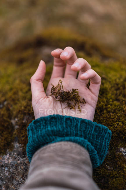 Female hand touching stone with green moss. — Stock Photo