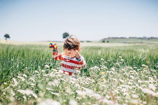 Хлопчик з пацифізатором ходить на полі, повному квітів у сільській місцевості, і тримає іграшку. — стокове фото