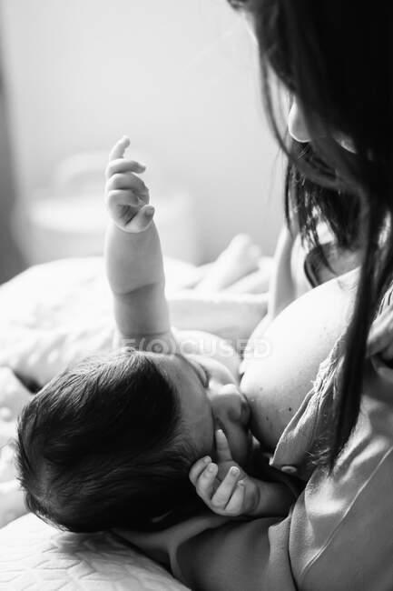 Desde arriba madre joven sosteniendo las manos y amamantando al bebé recién nacido envuelto en manta en la cama en casa - foto de stock